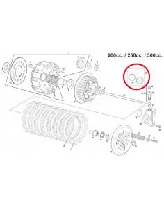 KIT REPARACION PINZA DE EMBRAGUE GAS GAS 200/250/300