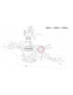 JUNTA TOBERA DE ESCAPE CILINDRO GAS GAS 200/250/300